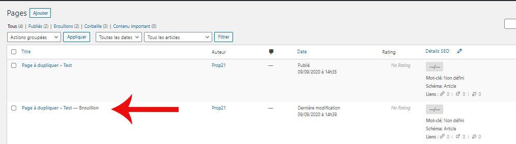 """Plugin """"Duplicate page"""" : copie d'écran qui montre comment dupliquer une page"""